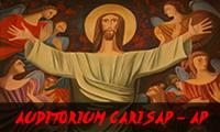 Auditorium Carisap - AP